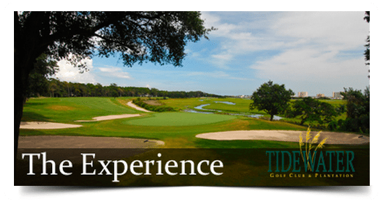 The Tidewater Experience